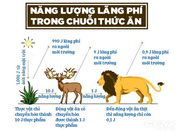 chuoi-thuc-an.jpg