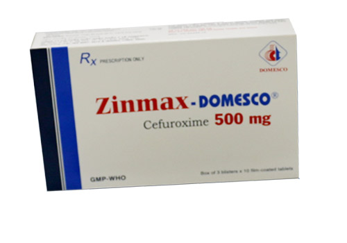 Zinmax Domesco 500mg