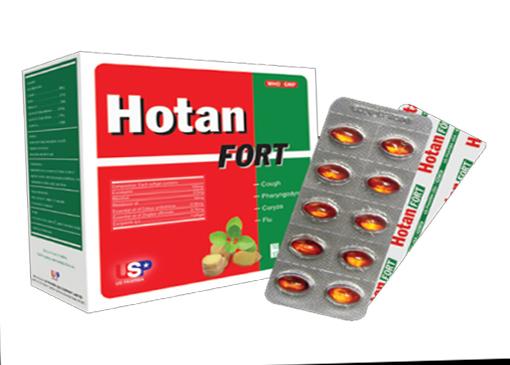 Hotan fort