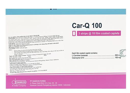 Car Q 100