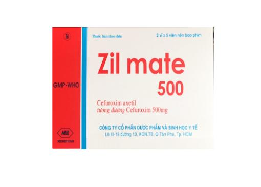 Zil Mate 500