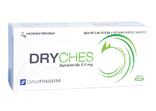 Dryches