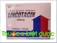 Lincotacin 500mg