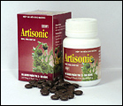 Artisonic