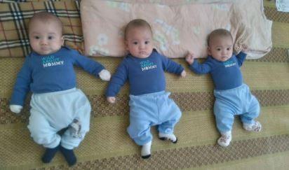 3 bé trai cùng trứng