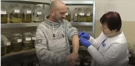 Đỉa trong y học: Tại sao mỗi năm người Nga dùng tới 10 triệu con đỉa để chữa bệnh?