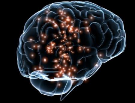 Những người lớn tuổi có khả năng tạo ra hàng ngàn nơ-ron trong vùng hồi hải mã, từ các tế bào tiền thân của chúng giống người trẻ tuổi