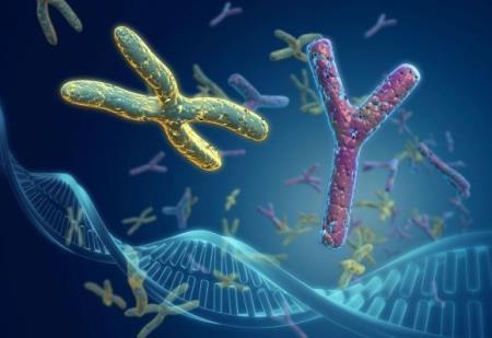 110 gene liên quan đến ung thư vú mới được phát hiện đem lại hy vọng cho các phương pháp chẩn đoán và điều trị mới hiệu quả hơn.