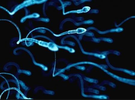 Căng thẳng có thể làm tinh trùng yếu đi 47%