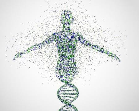 Siêu dự án với tham vọng quét được cơ thể người tới độ phân giải từng tế bào. Ảnh minh họa