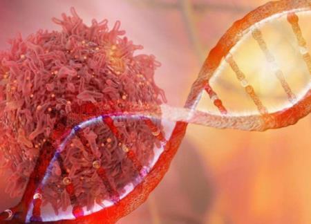 Mang đột biến gen BRCA1 và BRCA2 có nguy cơ ung thư vú cao