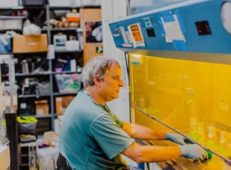 David Anderson làm việc với một tủ hút trong phòng thí nghiệm của Dự án Insulin Mở