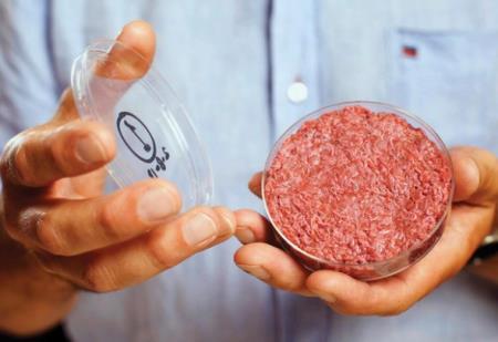 Món thịt nhân tạo được sản xuất trong phòng thí nghiệm.