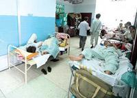 TP HCM: Sốt xuất huyết tấn công người lớn