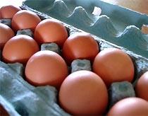 Lòng trắng trứng gà giúp giảm bạch đới. Ảnh: Wordpress.